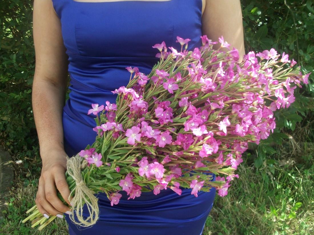Buget Bouquet