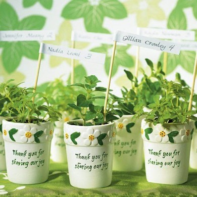 http://www.beau-coup.com/miniatureflowerpots.htm